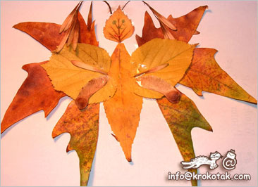 Dry Leaf COLLAGE