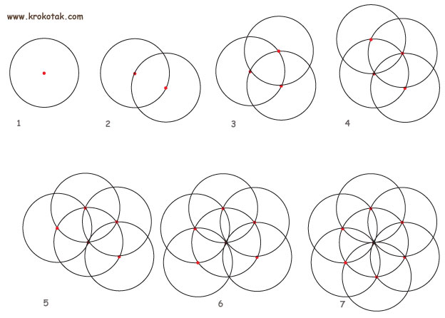 Gallery For gt How To Draw The Flower Of Life Without A Compass