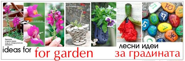 funny garden ideas