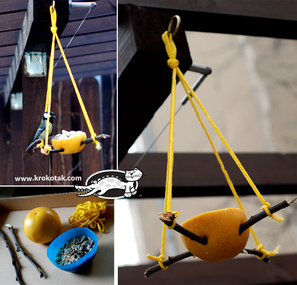 Eco bird feeder made of orange